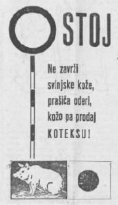 1959.02.06 - Celjski tednik - Na zavrzi svinjske koze