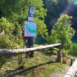 Mestni gozd je znova odprt in varen za obiskovalce