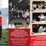 Vabimo na Mednarodni folklorni festival Od Celja do Žalca 2014 – podarjamo vstopnice