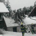 Sneg podrl drevesa in ogrožal promet; pri Rogaški oživel plaz