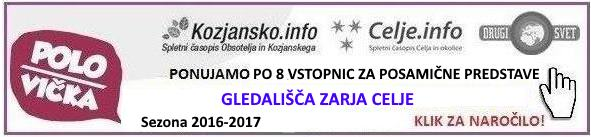 zarja-celje-polsi-klik-2016