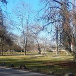 V celjskem mestnem parku še letos nov kostanjev drevored, predvidenih še nekaj novosti