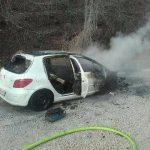 Požar vozila gasili člani treh društev (foto)