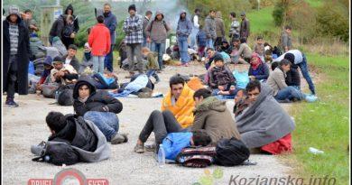 migranti338