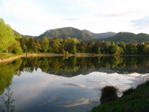 Jezero Vrbje razkriva prav poseben ekosistem.