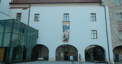Poletna muzejska noc (19)