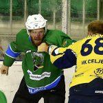 Hokejisti tokrat spuščenih palic, a dvignjenih pesti