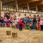 Indijanci, konji in kočije navdušili obiskovalce Festivala konjeništva