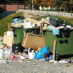 Malomaren odnos do okolja v Novi vasi: smeti nakopičene ob prepolnih zabojnikih in raztresene po okolici