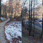Pelikanova pot na Stari grad Celje je odprta
