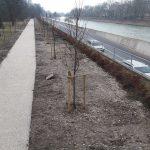 Načrtovane nove aktivnosti v Mestnem parku Celje: protipoplavni nasip, obnova stare fontane in glasbenega paviljona,…