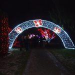 Božična bajka Slovenije z milijon lučkami v Mozirski gaj privabila še več ljudi, kot minulo sezono