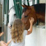 Konjeniški center Celje: 10. obletnica v znamenju zabave in druženja (foto, video)