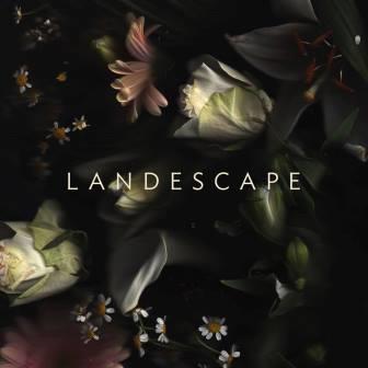 landescape_2