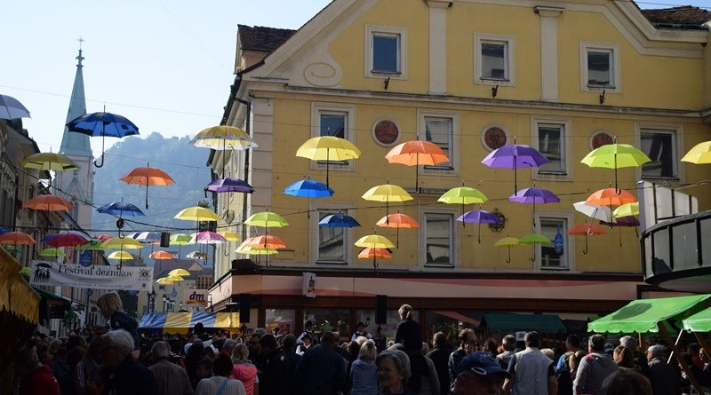 4-festival-deznikov005