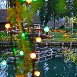 Božična bajka v Mozirskem gaju letos z 1,2 milijona lučk (foto, video, program)