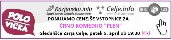 plen-gledalisce-zarja-klik