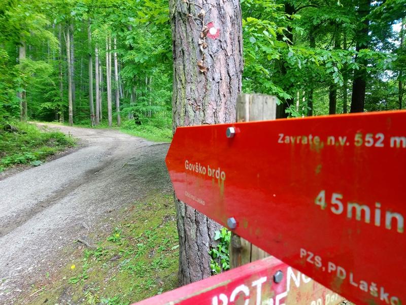 v-izboru-naj-planinska-pot-so-planinci-izglasovali-obnovo-reciske-planinske-krozne-poti