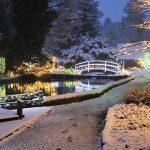 Božična bajka Slovenije 2019 v Mozirskem gaju s 1.500.000 lučkami in številnimi novostmi