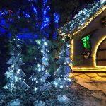 Božična bajka Slovenije pritegnila več kot 35.000 obiskovalcev
