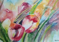 30-tulipani-akvarel-30-x-45-cm-dora-glavnik-celje