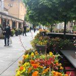 V mesto se je naselil pomladni vrvež