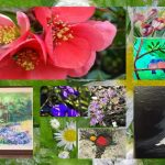 """Likovna kolonija ustvarila prvo spletno razstavo """"Pomlad"""" (foto)"""