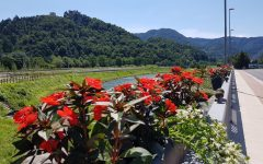Cvetlicna korita na mostu