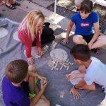 Otroci v družbi Celjskega mladinskega centra neizmerno uživali (foto)