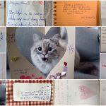Teden pisanja z roko na OŠ Frana Kranjca obeležili s pisanjem pisma prijatelju (foto)