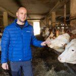 Mleko brez GSO je v resnici tradicija slovenskega mlekarstva