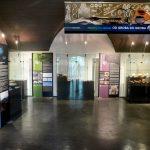 Pokrajinski muzej Celje na ogled postavil barvito razstavo grobov. Nekateri v Celju videni prvič (foto)