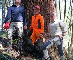 3 foto Andraž Purg – Merilci najvišjega drevesa v Sloveniji (z leve) mag. Robert Hostnik, Rado Nadvešnik in Robert Hedl