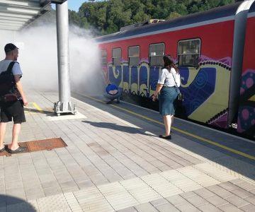 Goreči potniški vlak v Štorah (foto: Egon Horvat)
